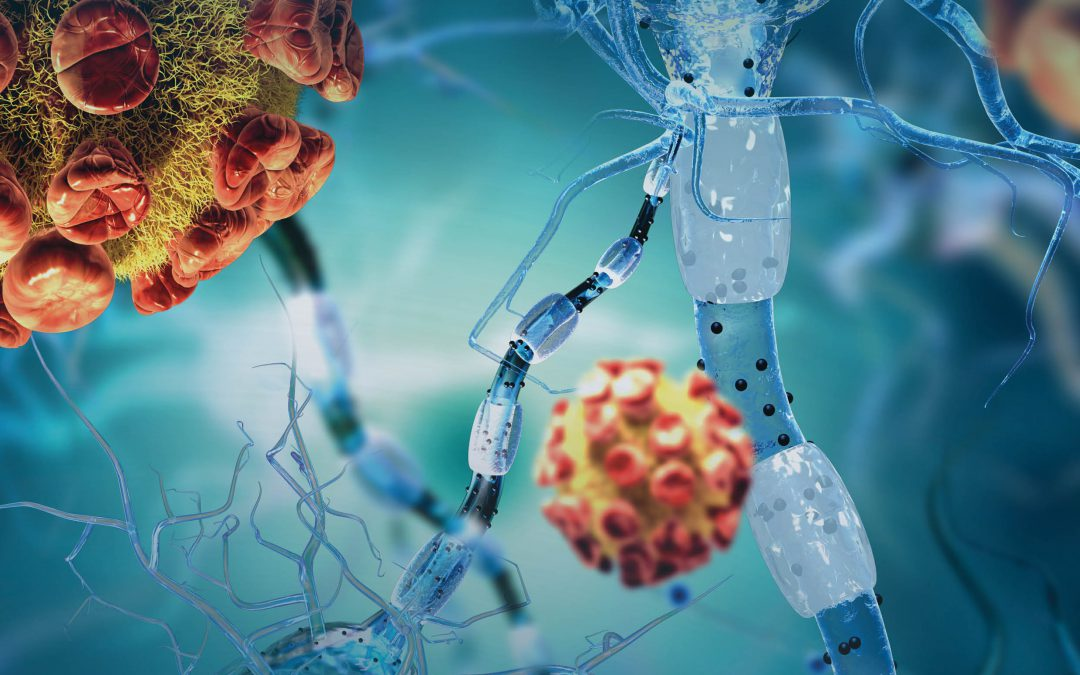 Scientia Issue #118