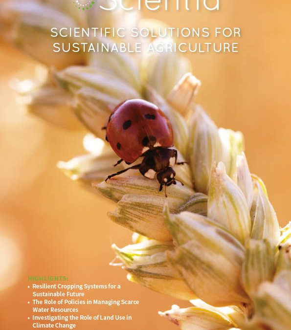 Scientia Issue #123