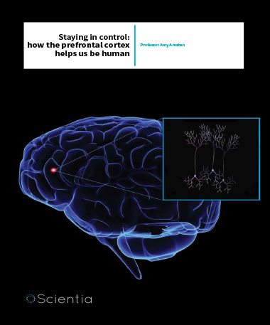 Professor Amy Arnsten – Staying In Control: How The Prefrontal Cortex Helps Us Be Human