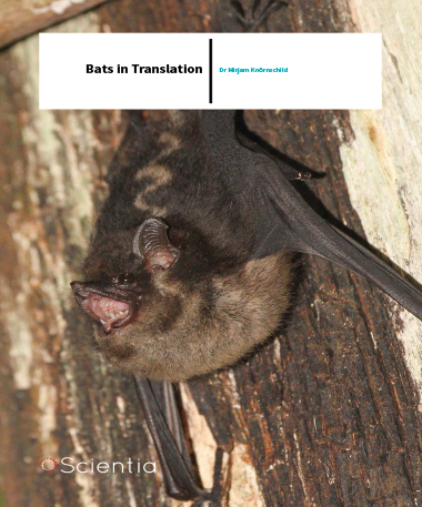 Dr Mirjam Knörnschild – Bats In Translation