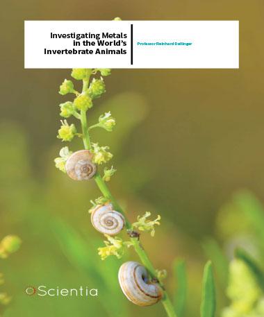 Professor Reinhard Dallinger – Investigating Metals In The World's Invertebrate Animals