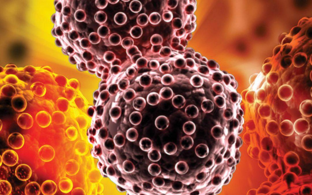 Professor Eli Glatstein – Photodynamic Therapy: An Illuminating Approach To Cancer Treatment