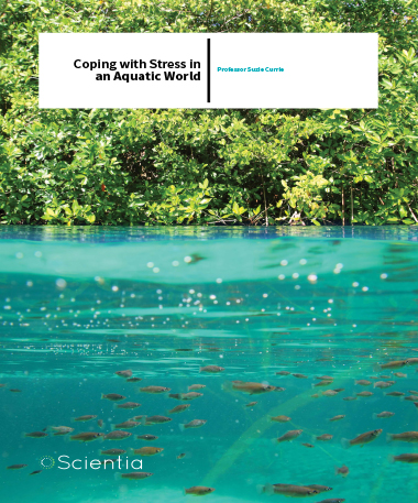 Professor Suzie Currie – Coping With Stress In An Aquatic World
