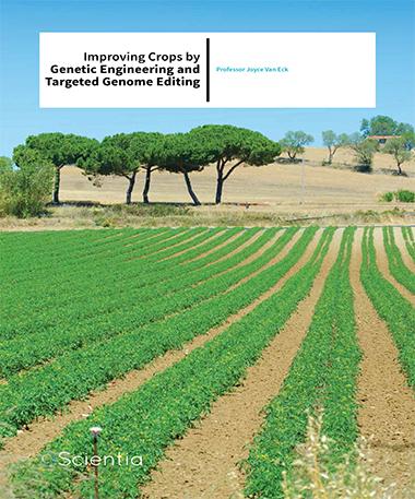 Professor Joyce Van Eck – Improving Crops By Genetic Engineering And Targeted Genome Editing