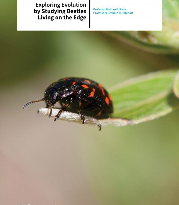 Professor Nathan E. Rank | Professor Elizabeth P. Dahlhoff – Exploring Evolution By Studying Beetles Living On The Edge