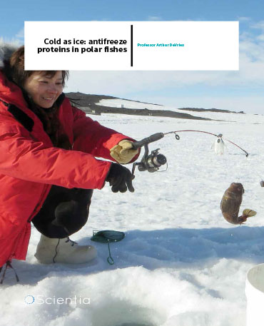 Professor Arthur Devries – Cold As Ice: Antifreeze Proteins In Polar Fishes