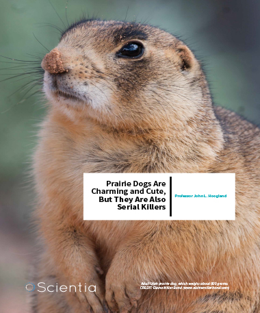 Professor John L. Hoogland – Prairie Dogs Are Charming And Cute, But They Are Also Serial Killers