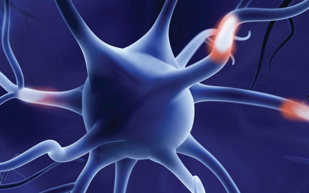 Dr Tamàs Fülöp – A New Perspective For Alzheimer's Disease Treatment