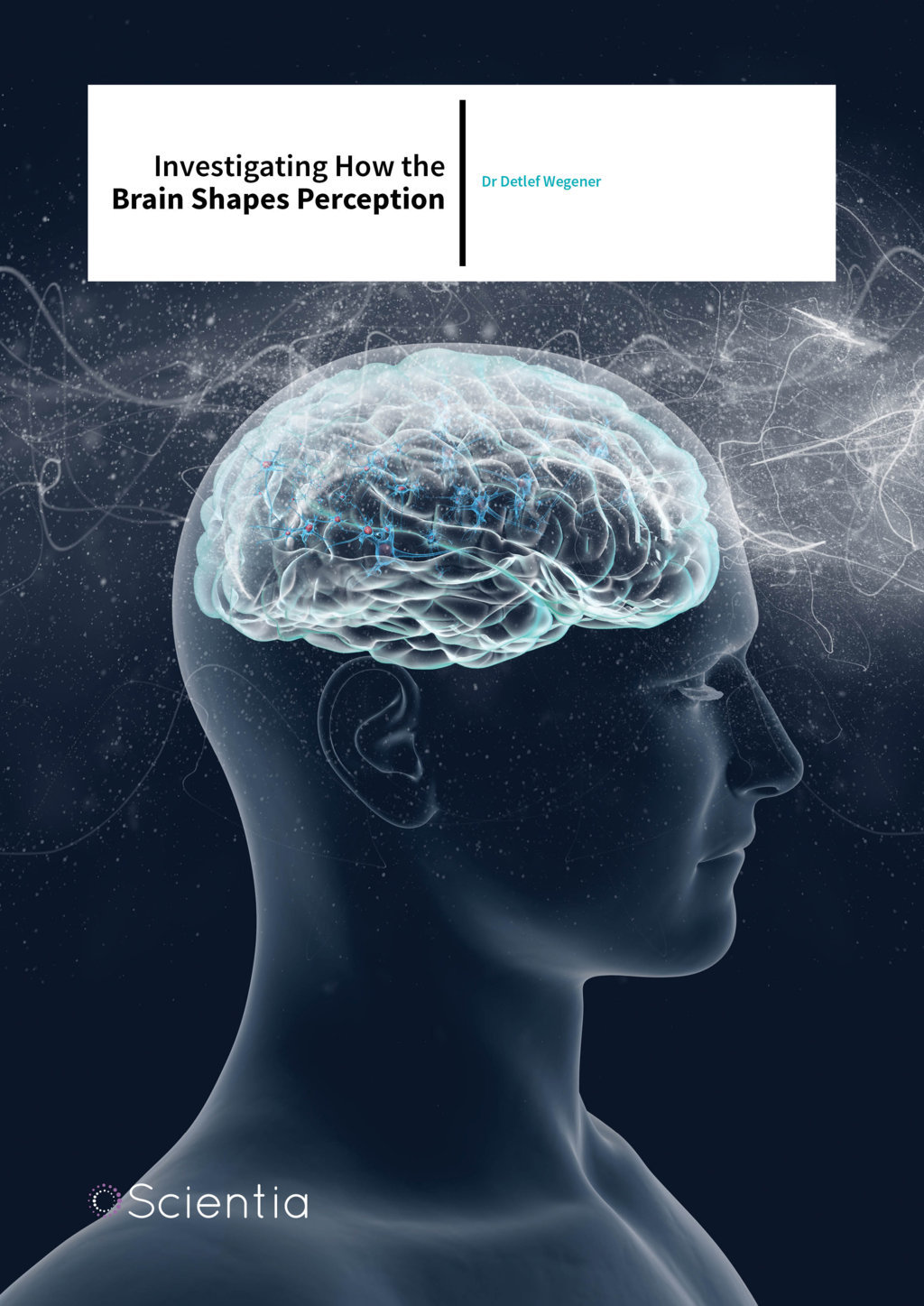 Dr Detlef Wegener – Investigating How the Brain Shapes Perception