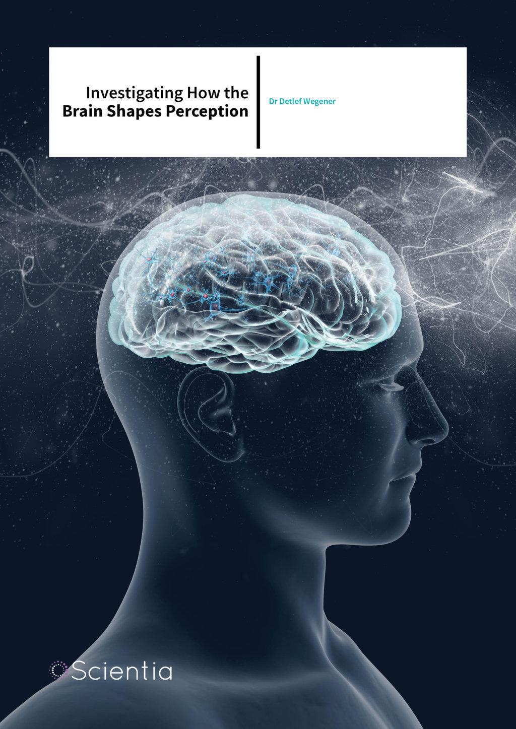 Dr Detlef Wegener – Investigating How The Brain Shapes Perception
