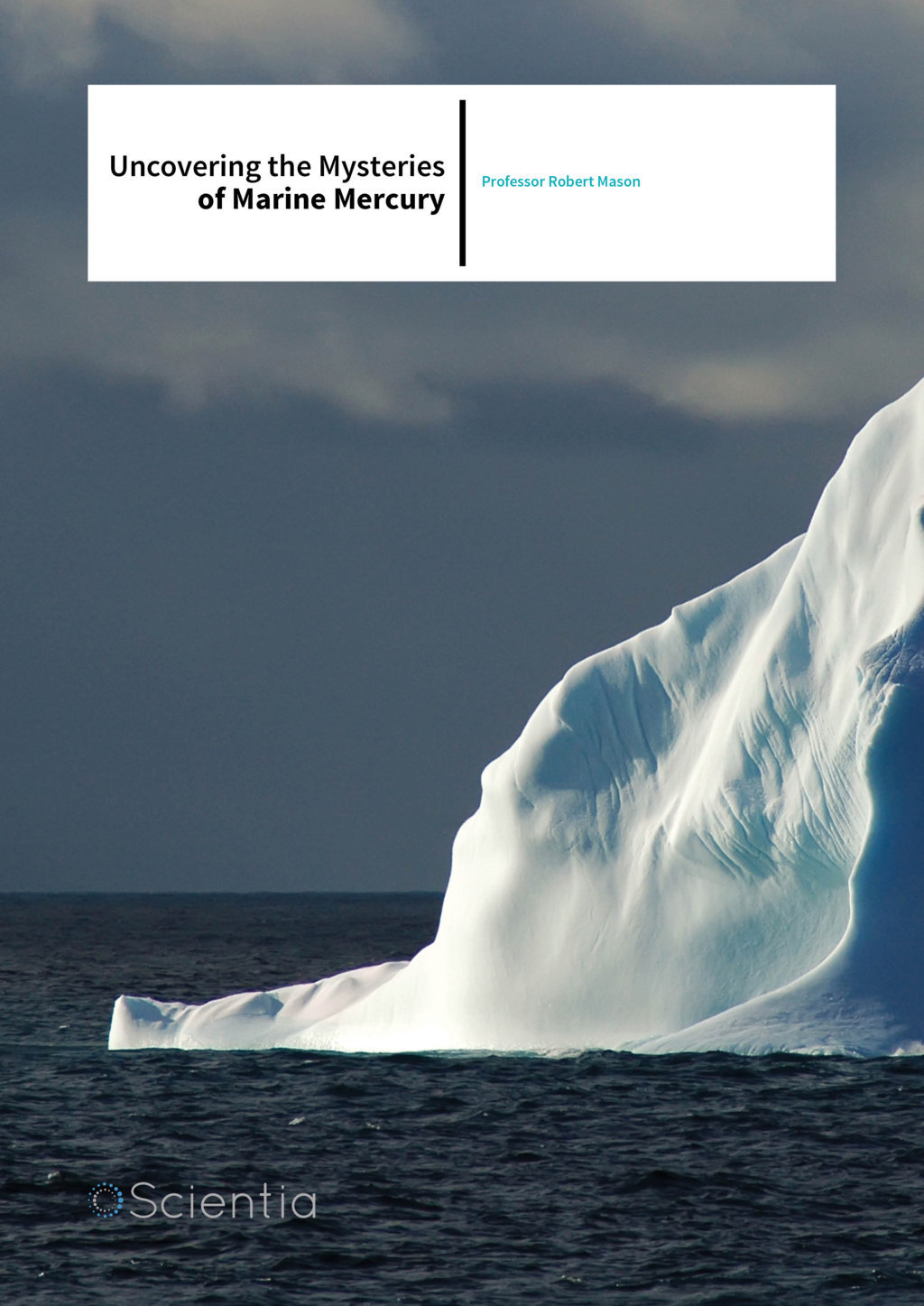 Professor Robert Mason – Uncovering The Mysteries Of Marine Mercury