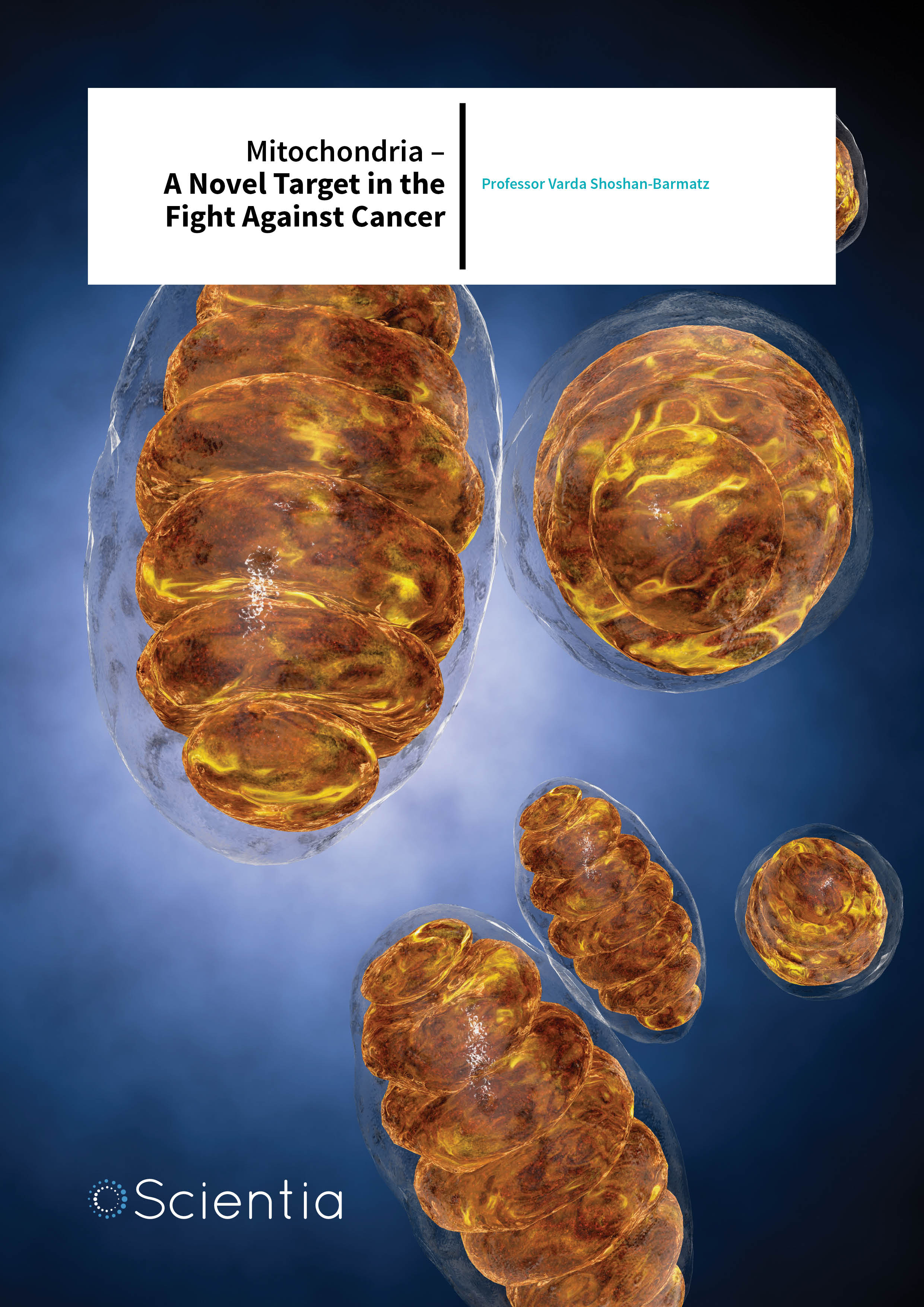 Professor Varda Shoshan-Barmatz – Mitochondria – A Novel Target in the Fight Against Cancer