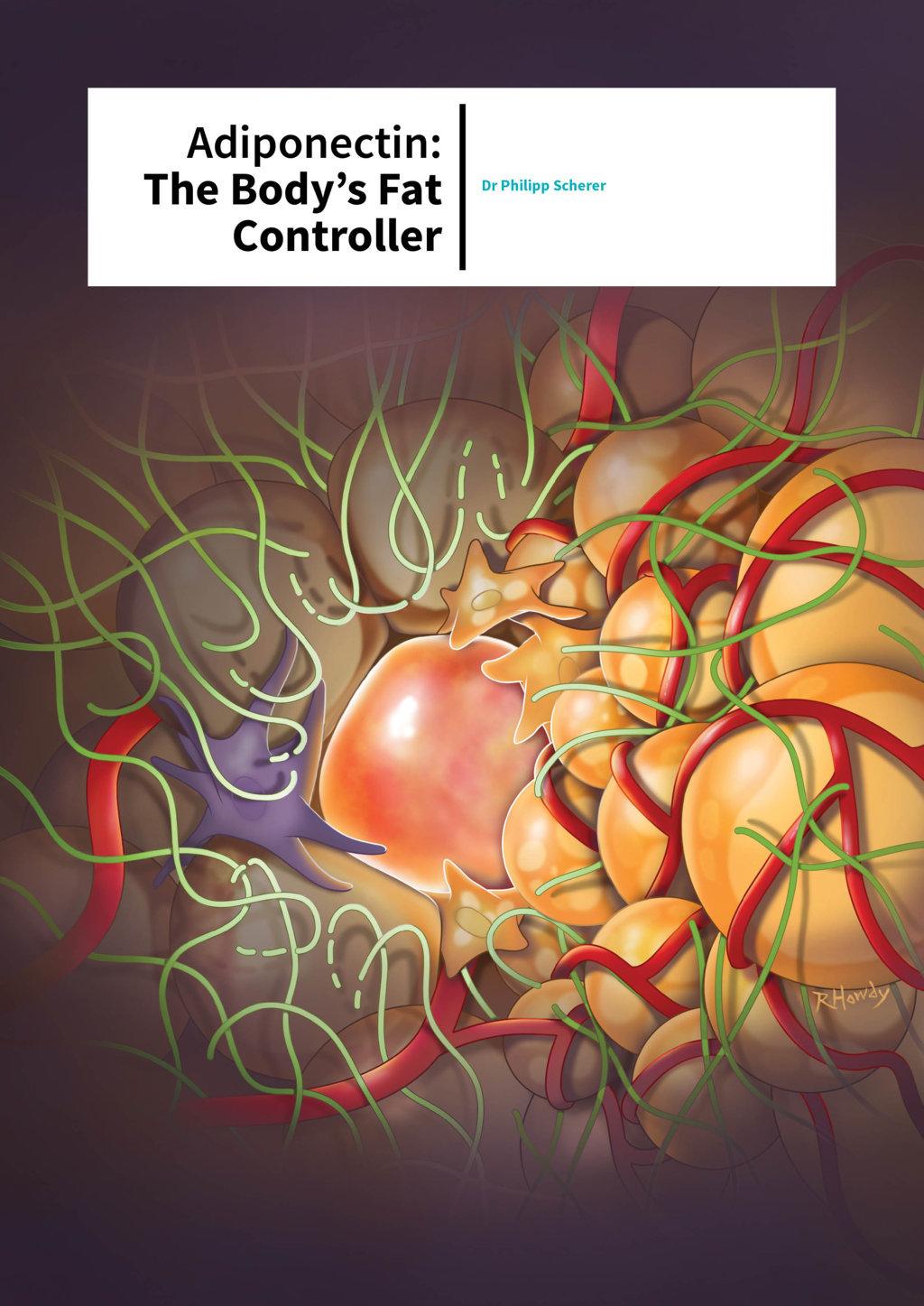 Dr Philipp Scherer – Adiponectin: The Body's Fat Controller