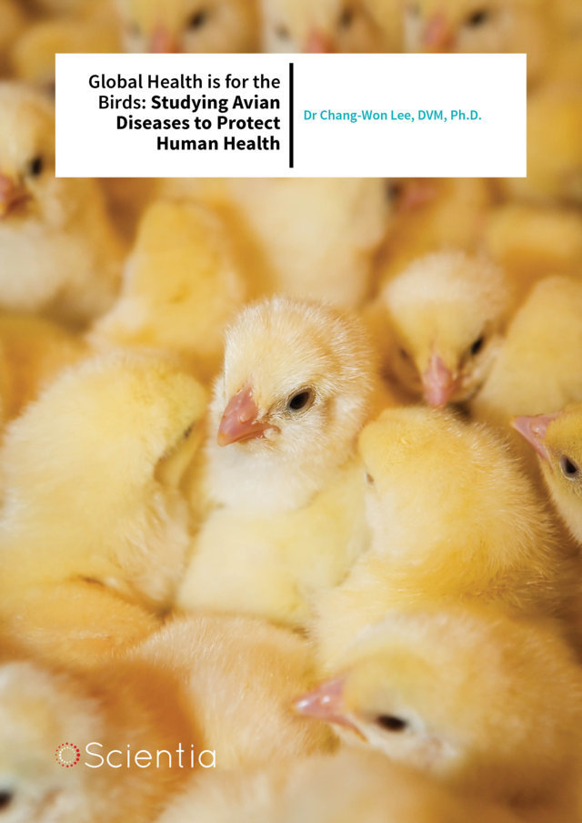 Dr Chang-Won Lee – Global Health is for the Birds: Studying Avian Diseases to Protect Human Health