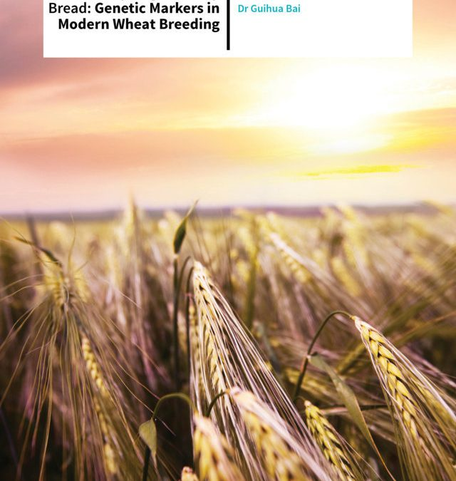 Dr Guihua Bai – Genotyping Our Daily Bread: Genetic Markers In Modern Wheat Breeding