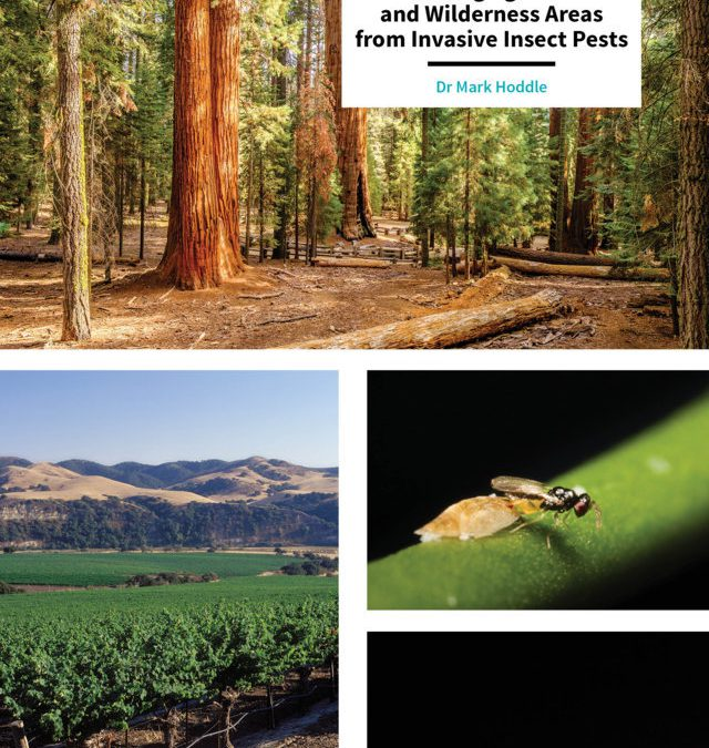 Mark Hoddle – Biological Control: Protecting Agriculture and Wilderness Areas from Invasive Insect Pests