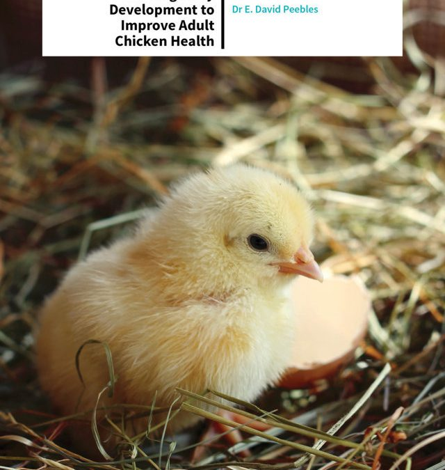 Dr David Peebles – The Chicken In The Egg: Hacking Early Development To Improve Adult Chicken Health