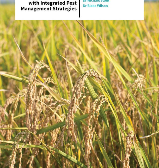 Dr Michael Stout | Dr Blake Wilson – Protecting United States Rice With Integrated Pest Management Strategies