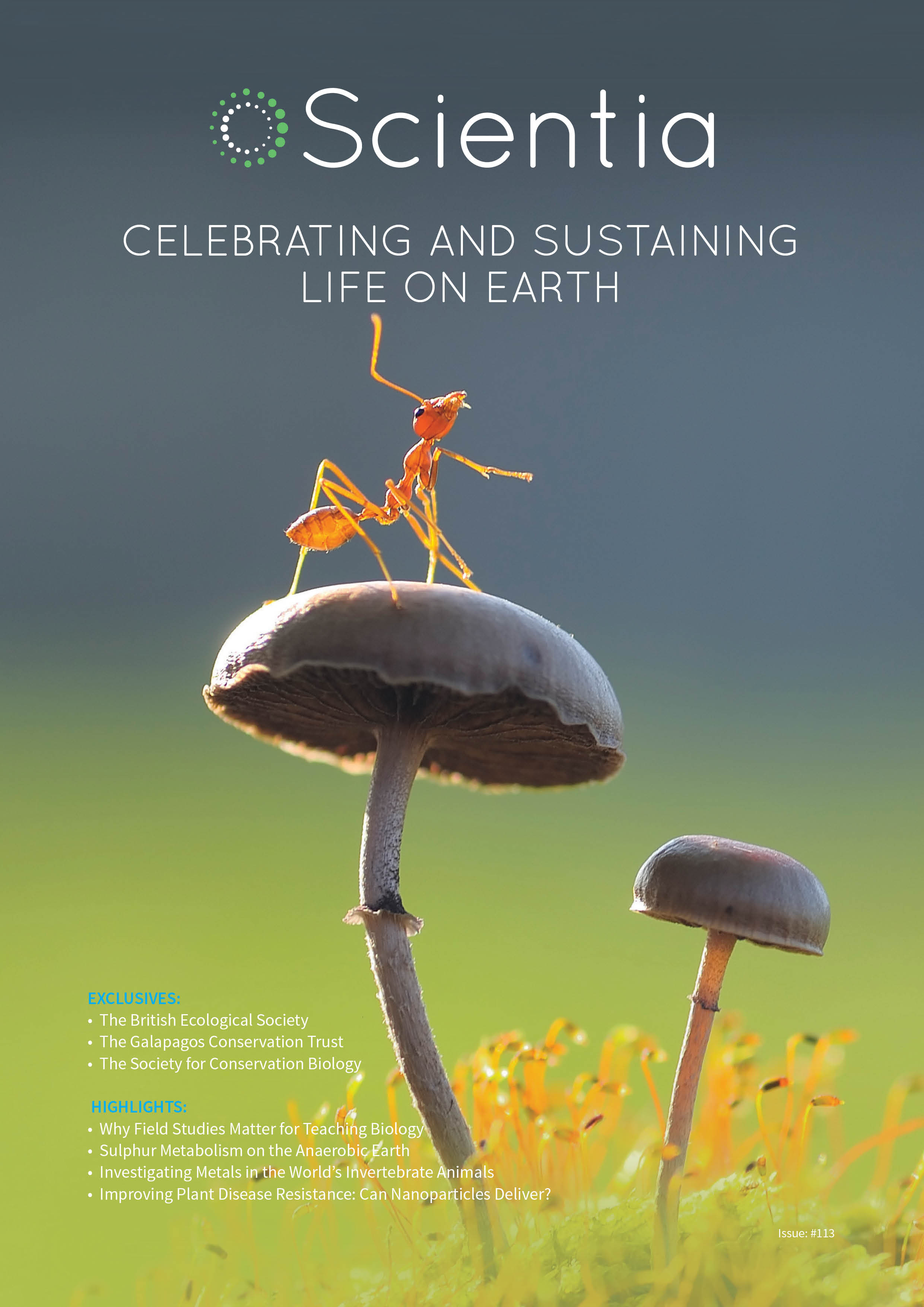 Celebrating And Sustaining Life On Earth Inhale Style Mosquito Killer Lamp Electric Circuit Scientia Mag 113 Web Cover