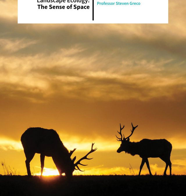 Professor Steven Greco  – Landscape Ecology: The Sense Of Space