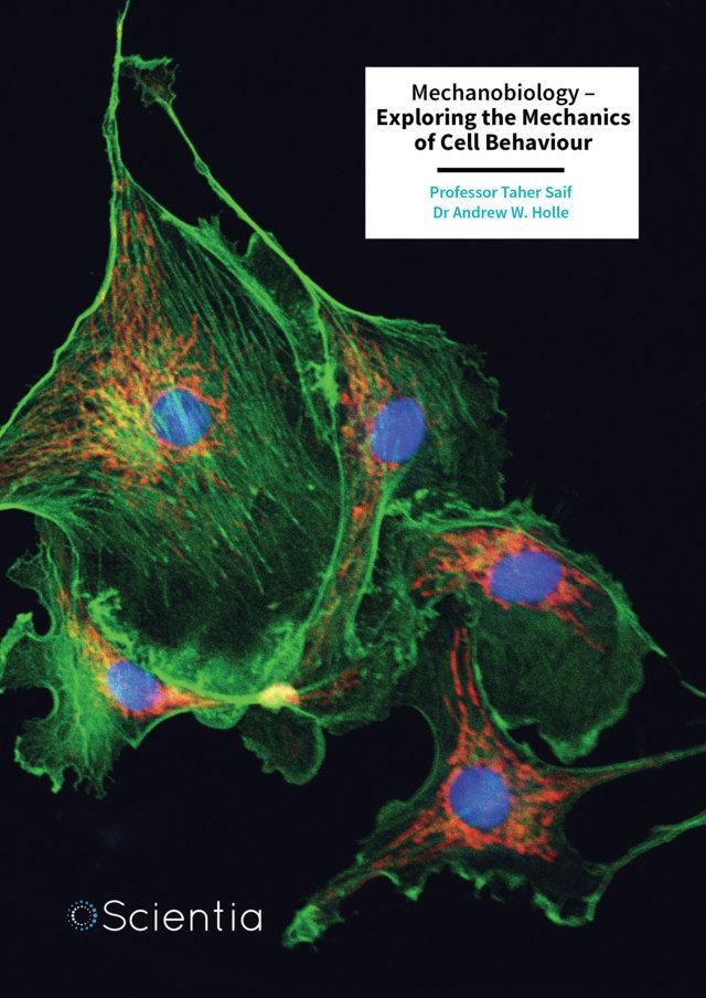Taher Saif   Dr Andrew Holle – Mechanobiology – Exploring the Mechanics of Cell Behaviour