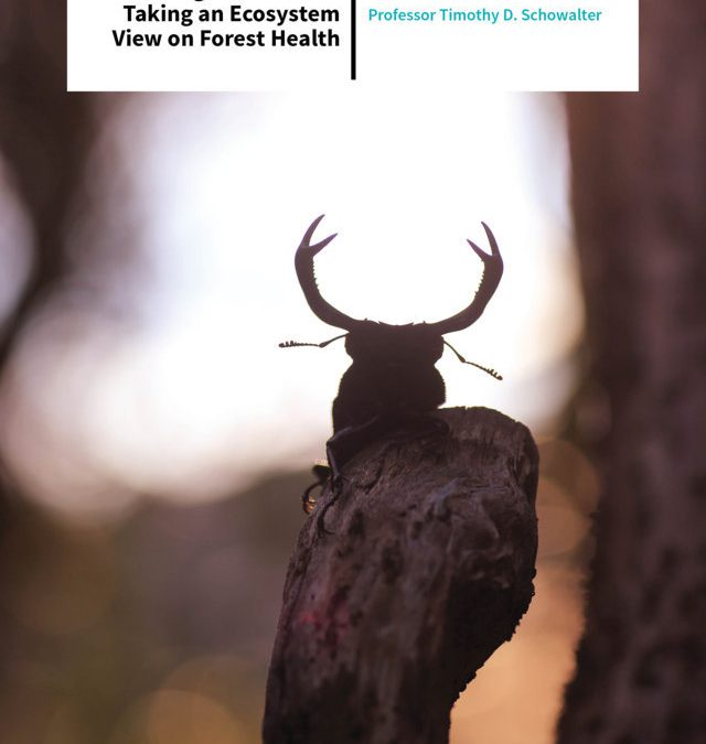 Professor Timothy Schowalter – Bugs are Friends: Taking an Ecosystem View on Forest Health