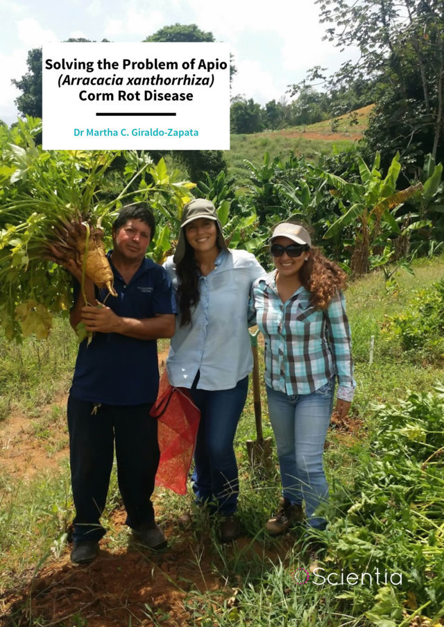 Dr Martha Giraldo – Solving the Problem of Apio (Arracacia xanthorrhiza) Corm Rot Disease
