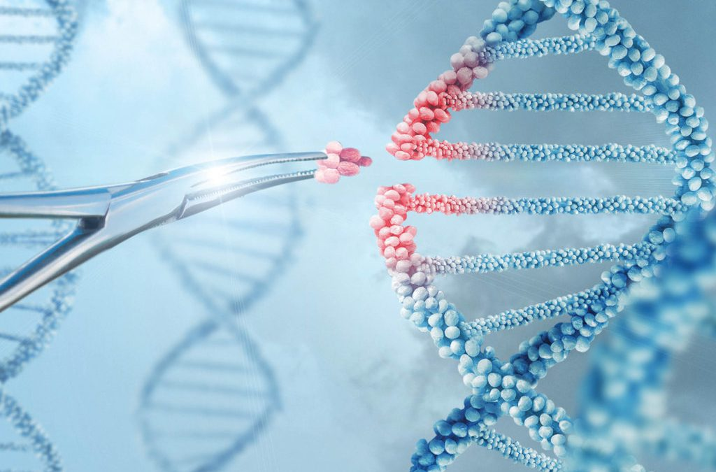 Dr. Erik Sontheimer – Innovation Is in Our RNA