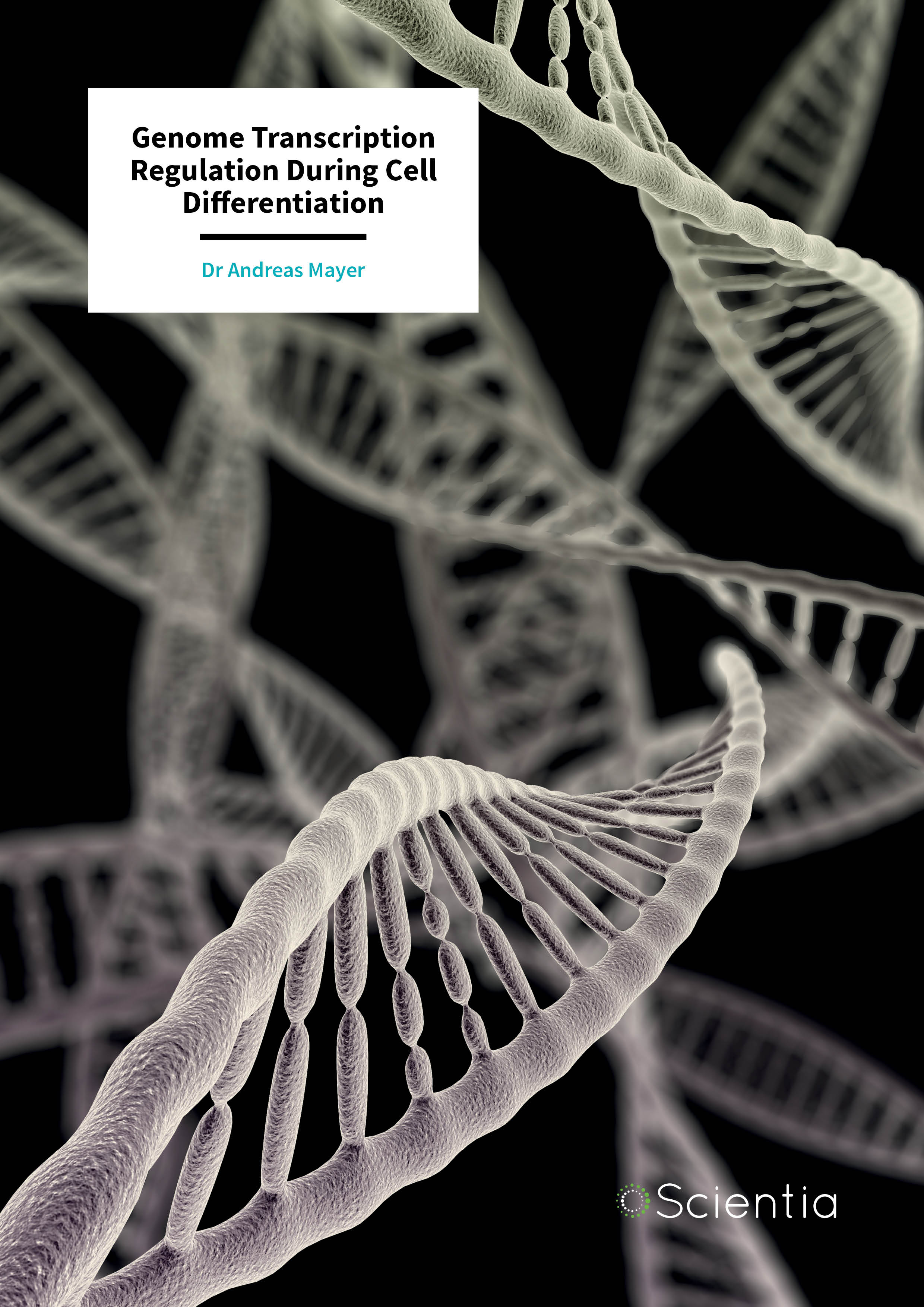 Dr Andreas Mayer – Genome Transcription Regulation During Cell Differentiation