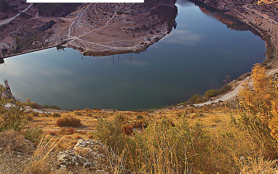 The Role of Policies in Managing Scarce Water Resources