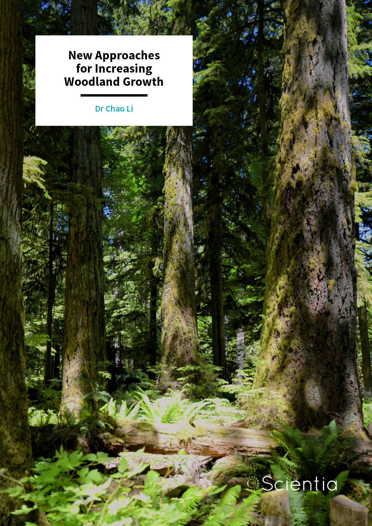 Dr Chao Li – New Approaches for Increasing Woodland Growth