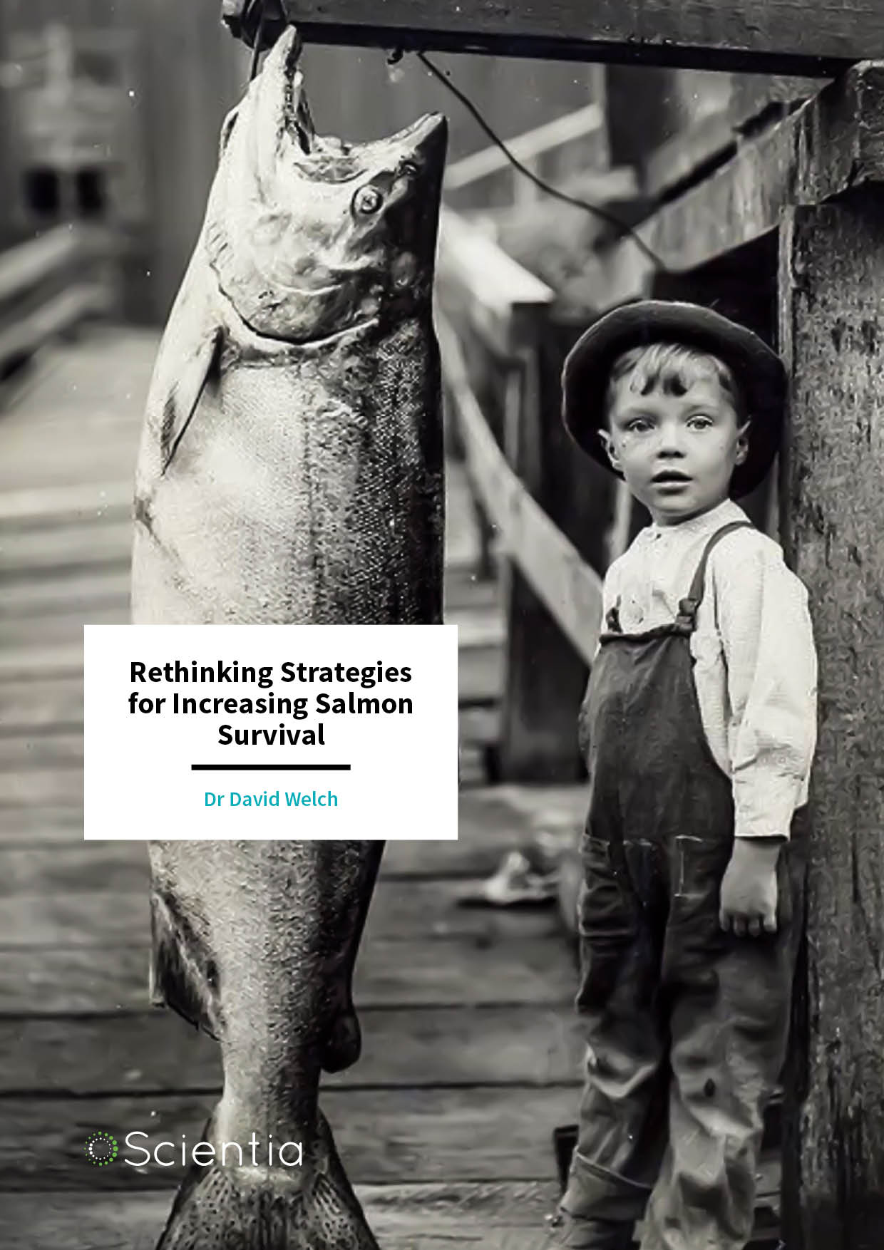 Dr David Welch – Rethinking Strategies for Increasing Salmon Survival