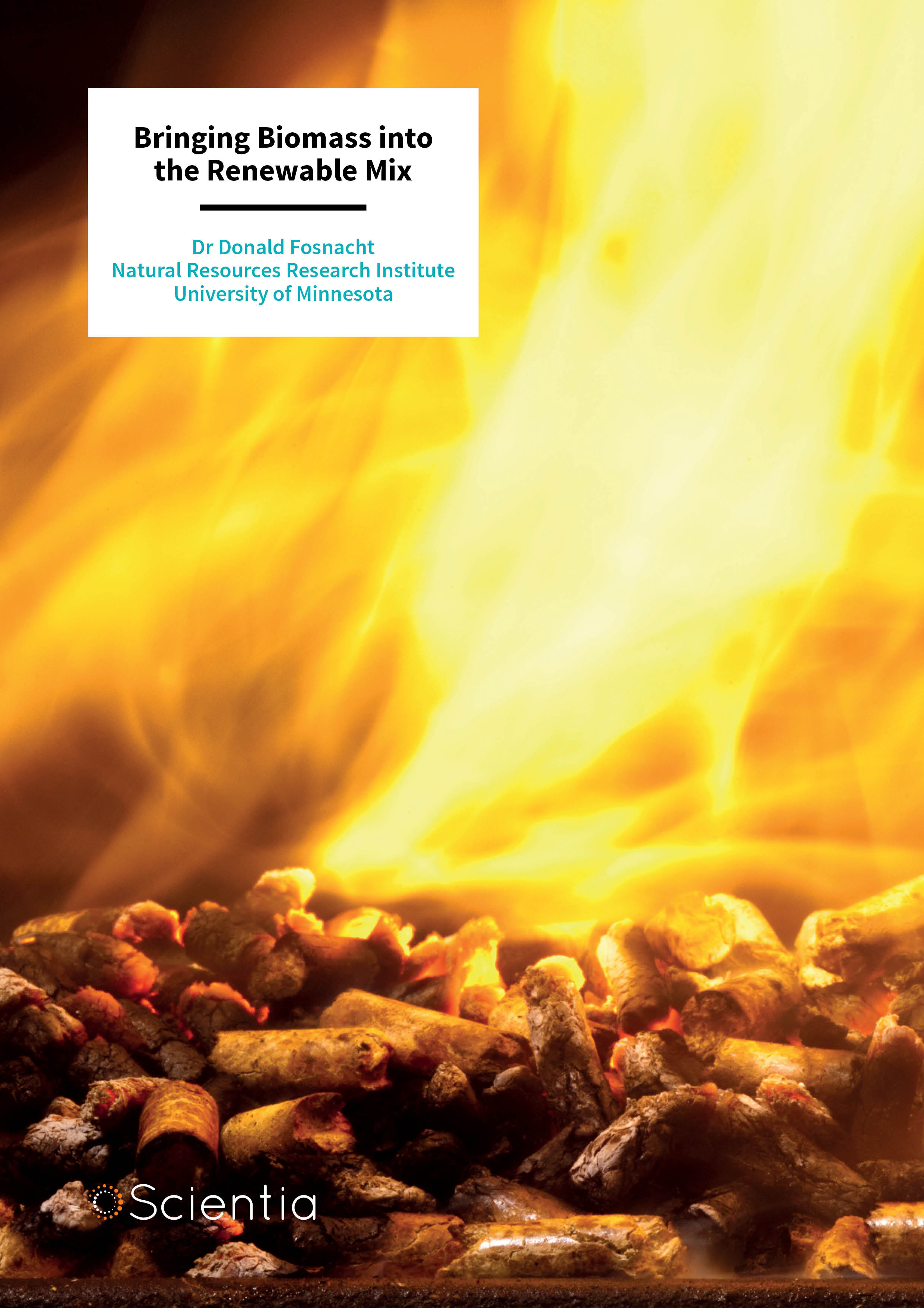 Dr Donald Fosnacht – Bringing Biomass into the Renewable Mix