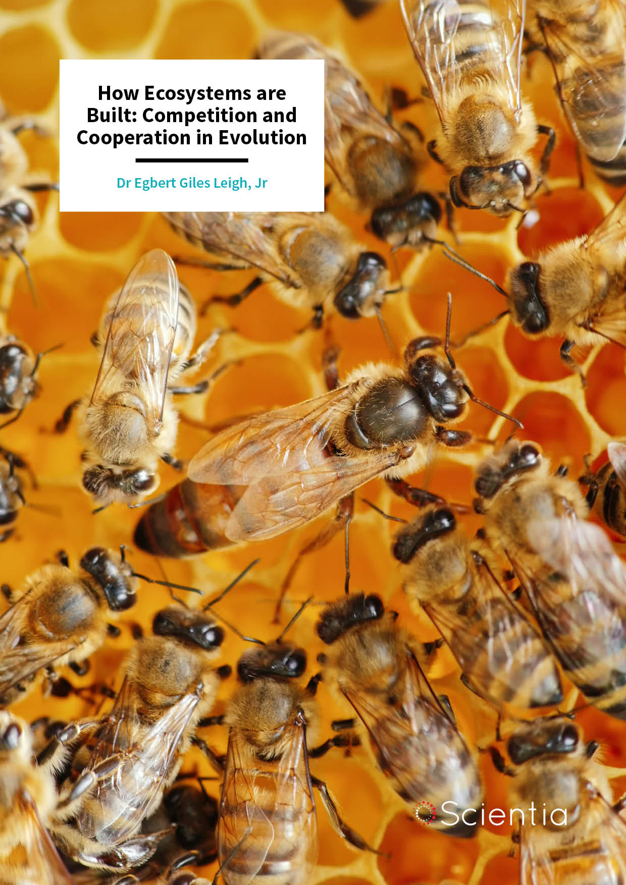 Dr Egbert Giles Leigh, Jr – How Ecosystems are Built: Competition and Cooperation in Evolution