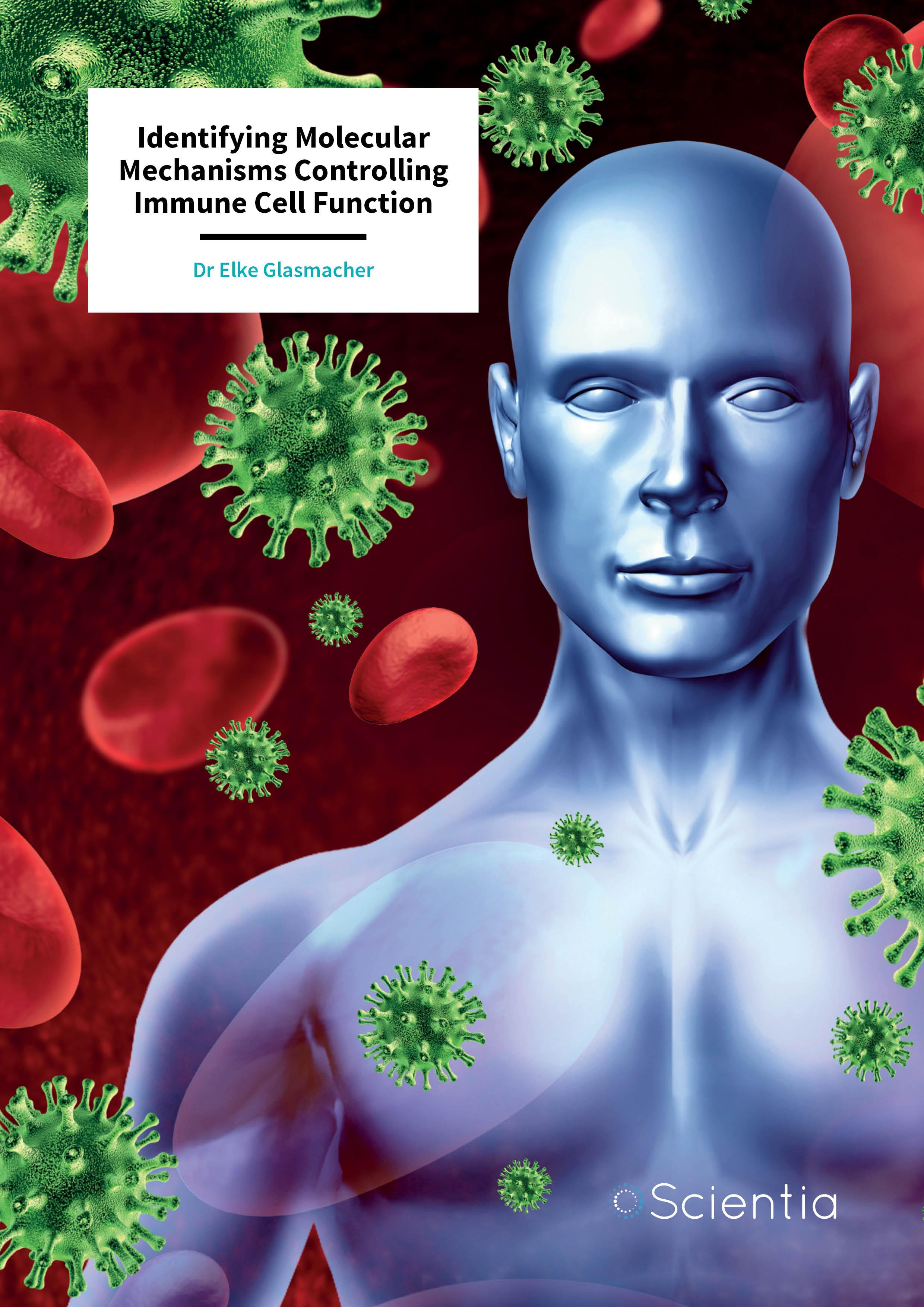 Dr Elke Glasmacher – Identifying Molecular Mechanisms Controlling Immune Cell Function