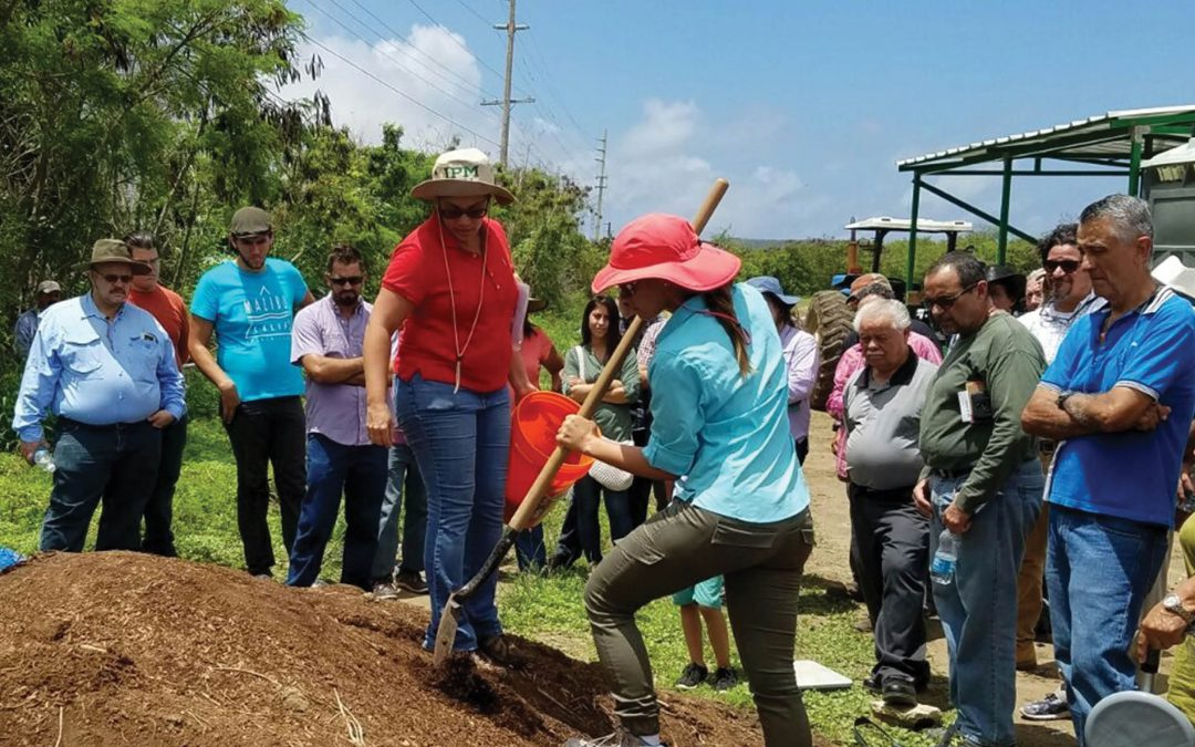 Dr Ermita Hernandez – Revitalising Puerto Rico Towards Sustainable Vegetable Production