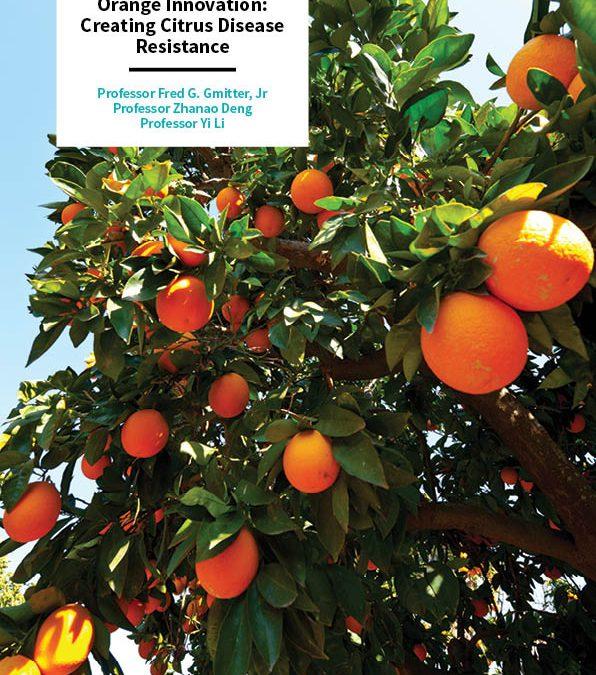 Orange Innovation: Creating Citrus Disease Resistance