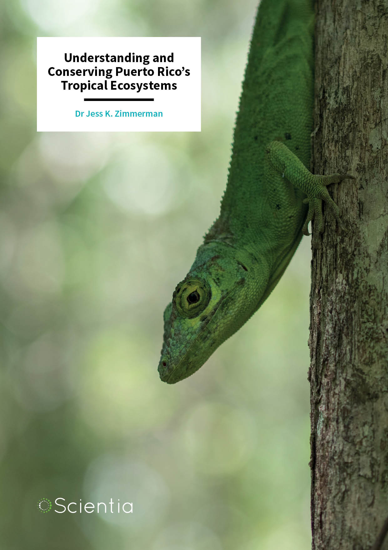 Dr Jess Zimmerman – Understanding and Conserving Puerto Rico's Tropical Ecosystems
