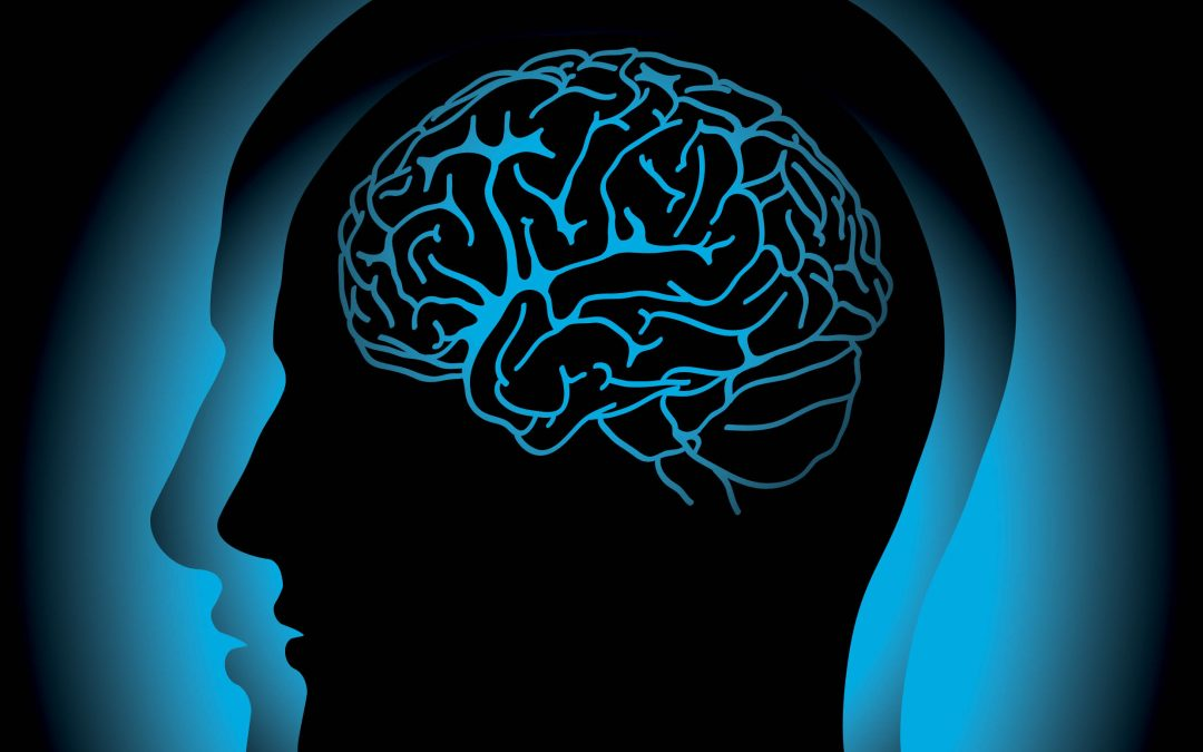 Professor Kirk Erickson – Health Neuroscience: How and Why Exercise Improves Cognitive