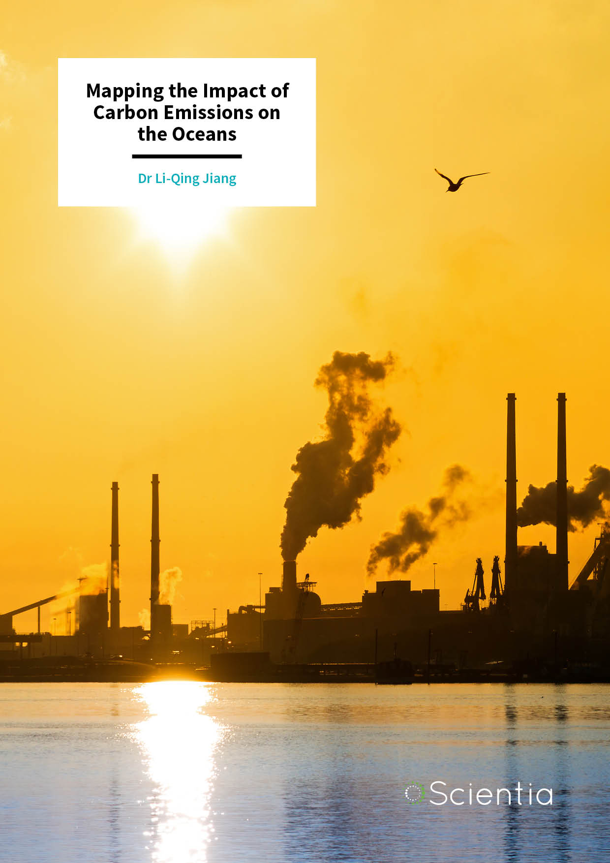 Dr Li-Qing Jiang – Mapping the Impact of Carbon Emissions on the Oceans