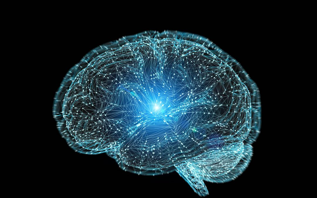 Dr Mary Logan | Dr Sean Speese – Protecting the Brain
