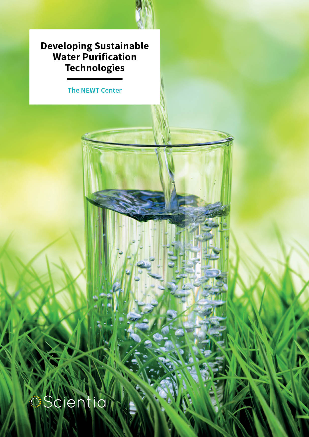 Developing Sustainable Water Purification Technologies