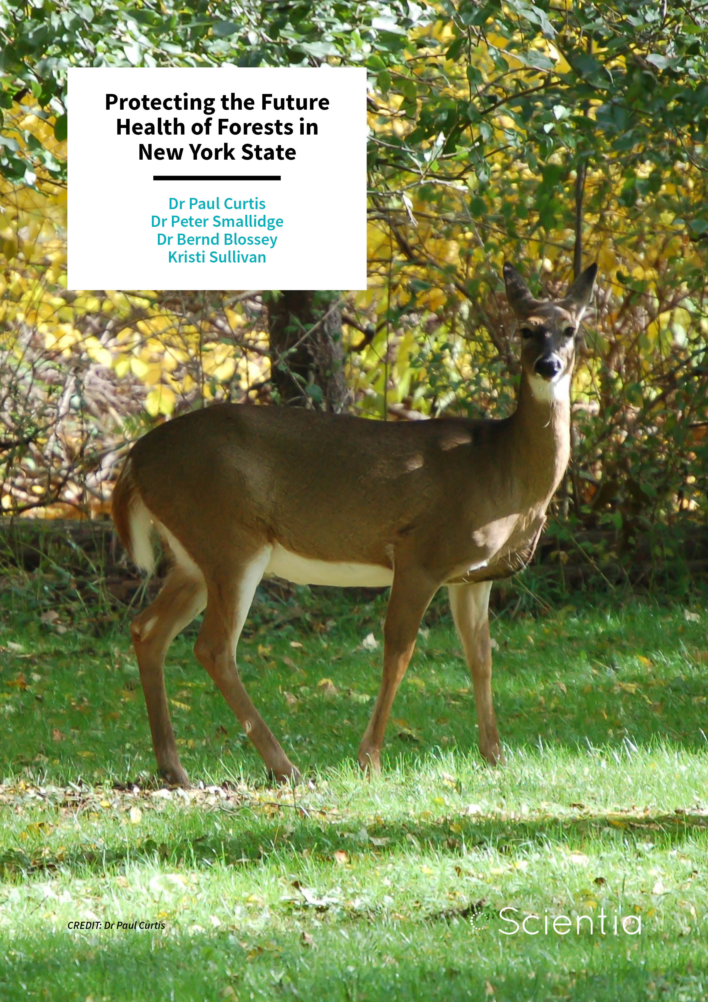 Dr Paul Curtis | Dr Peter Smallidge | Dr Bernd Blossey | Kristi Sullivan – Protecting the Future Health of Forests in New York State
