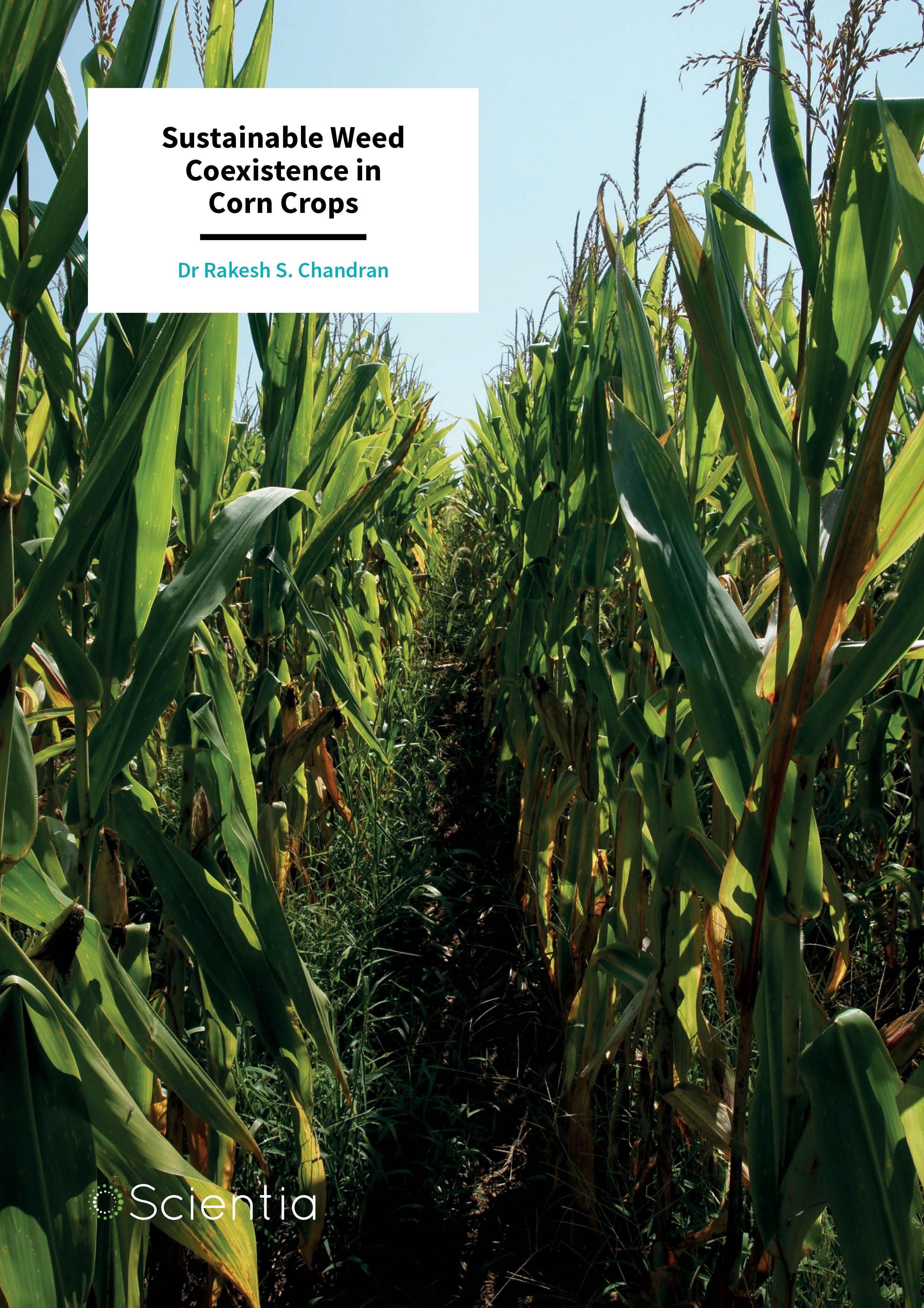 Dr Rakesh S. Chandran – Sustainable Weed Coexistence in Corn Crops