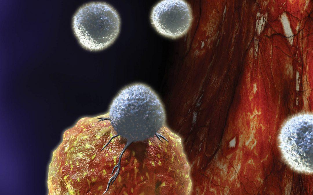 SFB 1027 – Cell Physics: Understanding How Biological Matter Self-Organises