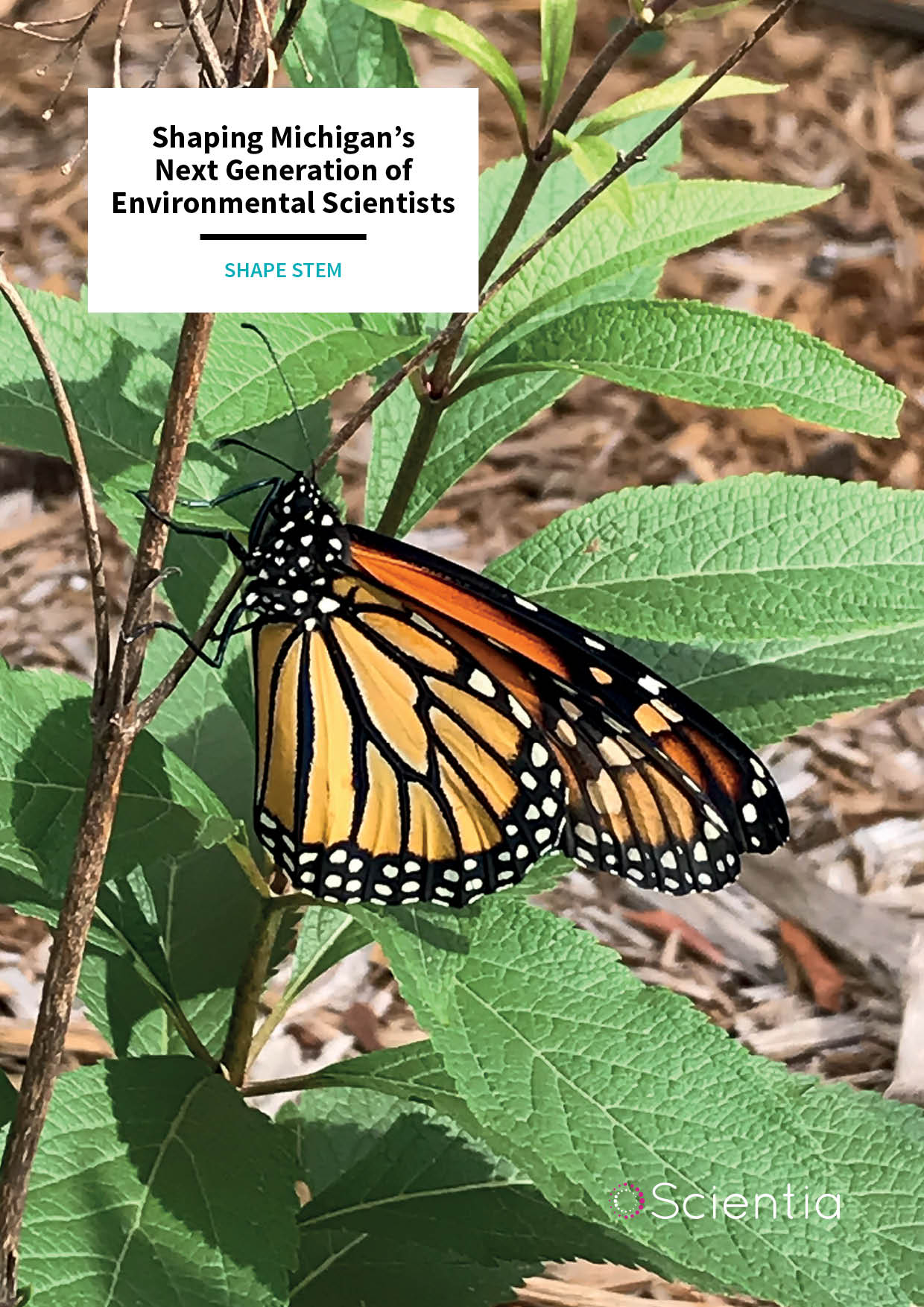SHAPE STEM – Shaping Michigan's Next Generation of Environmental Scientists