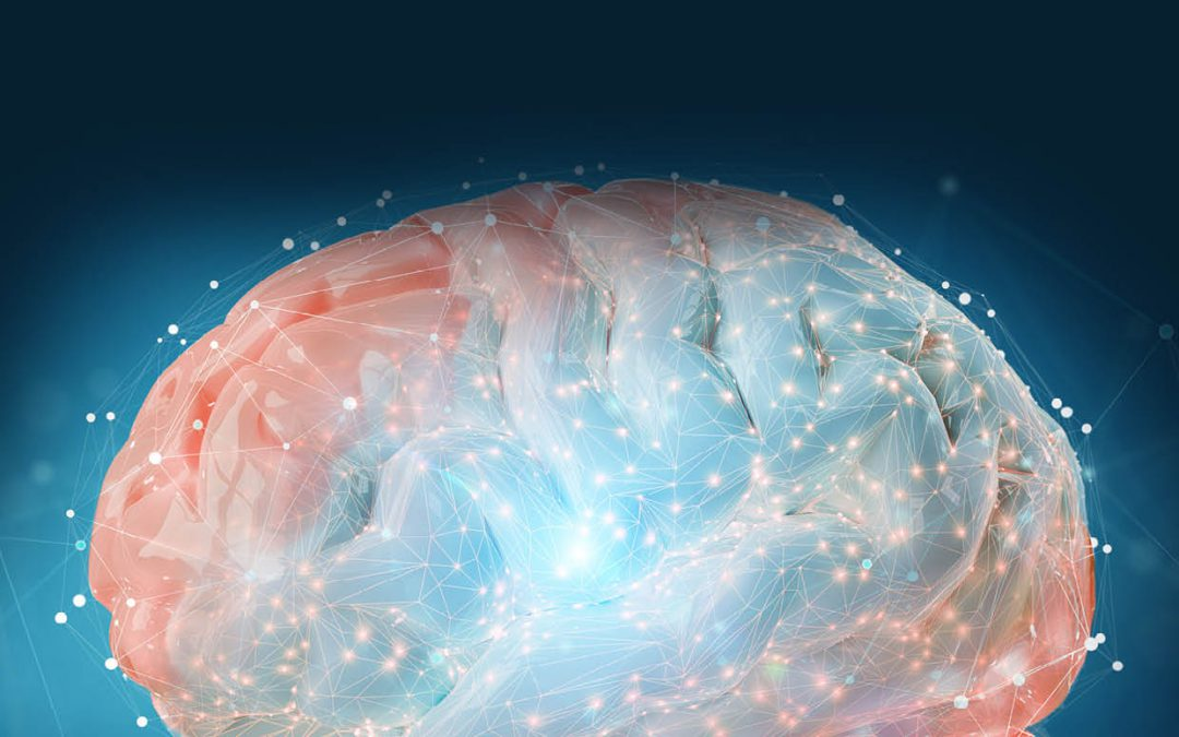 Professor Wolf Singer – The Coordination of Neuronal Communication